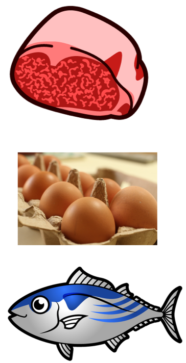 肉、卵、魚